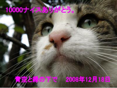 10000_081218.jpg