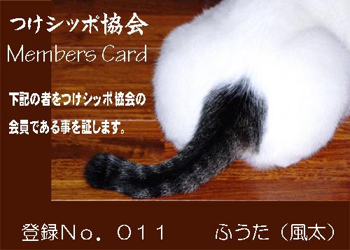 つけシッポ協会.jpg
